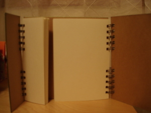 Journal_blank_inside